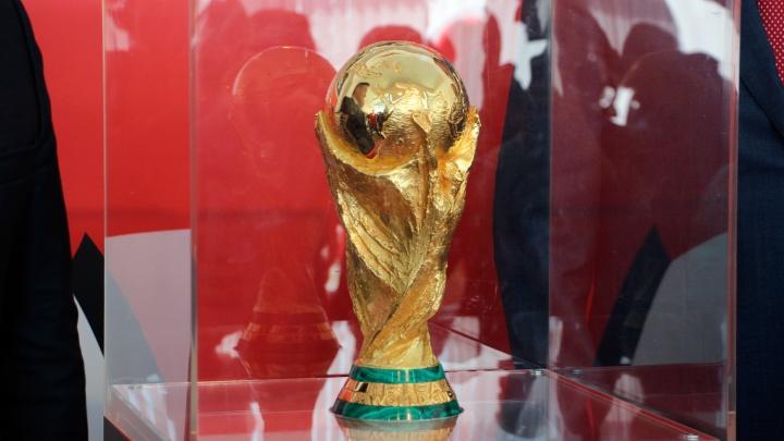 В Омск привезли кубок FIFA из шести килограммов золота