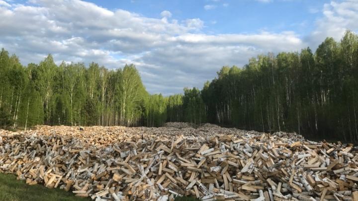 Душа жаждет баньки, а печь — жару: где в Челябинске купить дрова по системе «все включено»
