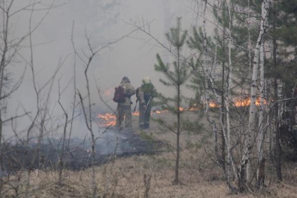 Пожарные и население Курганской области сражаются с пожарами