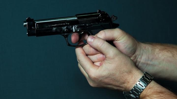 В Зауралье подстрелили мужчину, который напал на полицейский автомобиль с топором