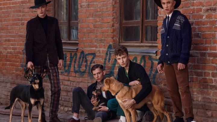 В Новосибирске бездомным псам устроили фэшн-съемку