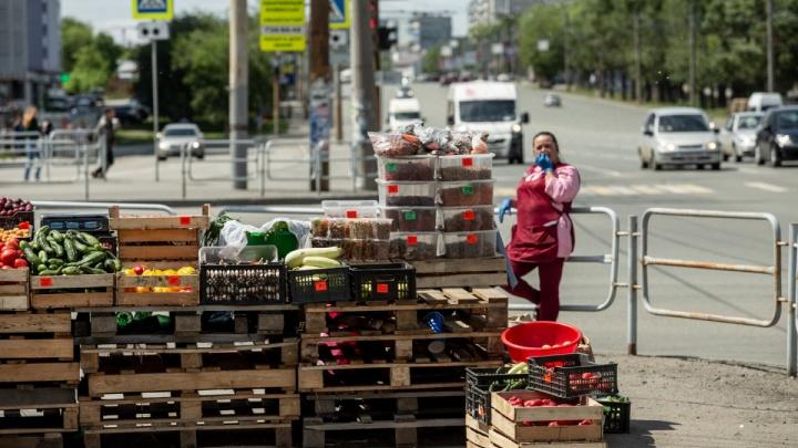 В мэрии анонсировали рейды по стихийным рынкам на улицах Челябинска