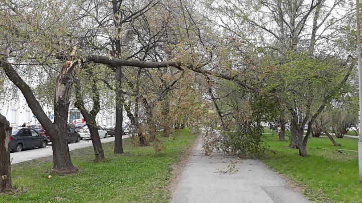 МЧС выпустило новое предупреждение о сильных грозах и граде в Свердловской области