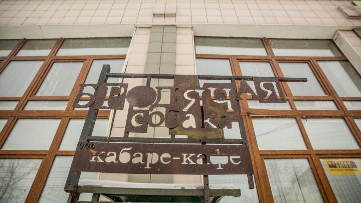 В новосибирском баре начали сдавать в аренду болтливых собутыльников