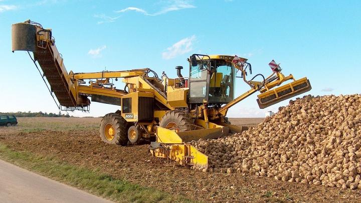 В Ростовской области построят сахарный завод за 120 миллионов евро