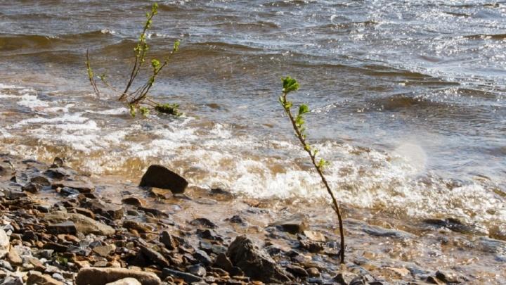 Range Rover вместе с водителем затонул в озере Денежном под Волгоградом