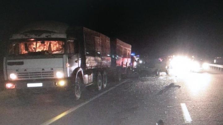 В Ростовской области в столкновении микроавтобуса с грузовиком погибли шесть человек