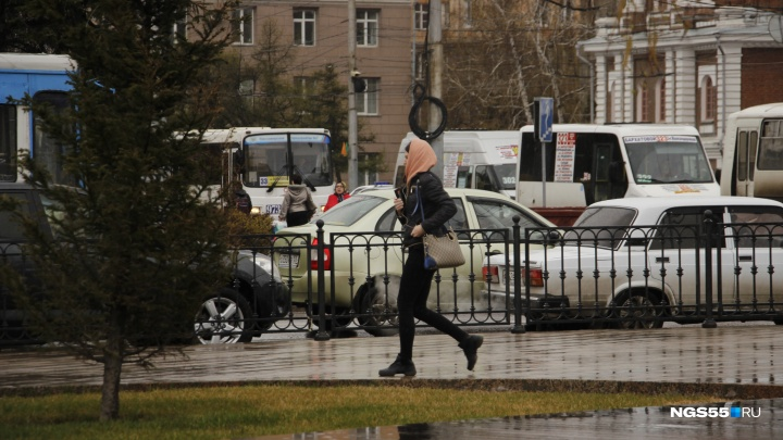 В МЧС предупредили омичей о граде, сильном ветре и грозе