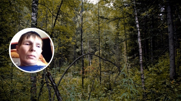 Волонтеры отправились в лес на поиски пропавшего два дня назад грибника