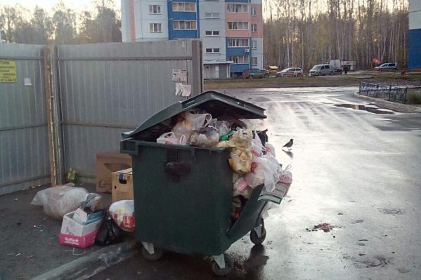 Жители «Паркового» утверждают, что к ним во двор уже вторую неделю по ночам привозят мусор