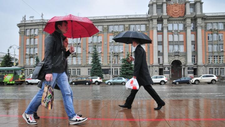 В воскресенье в Екатеринбурге и области пройдут сильные дожди, грозы и град