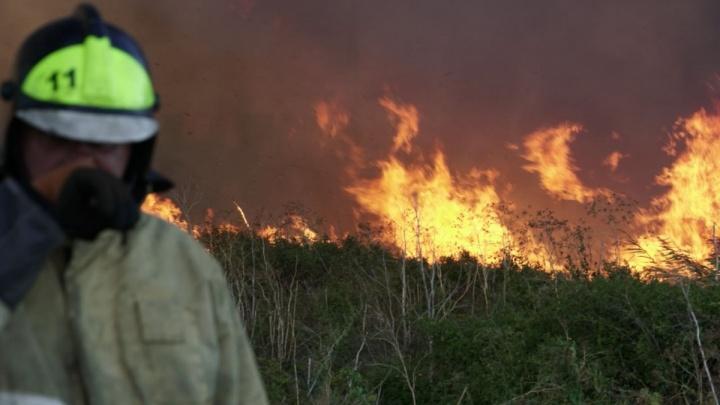 Тушили три часа: крупный природный пожар вспыхнул в Азовском районе