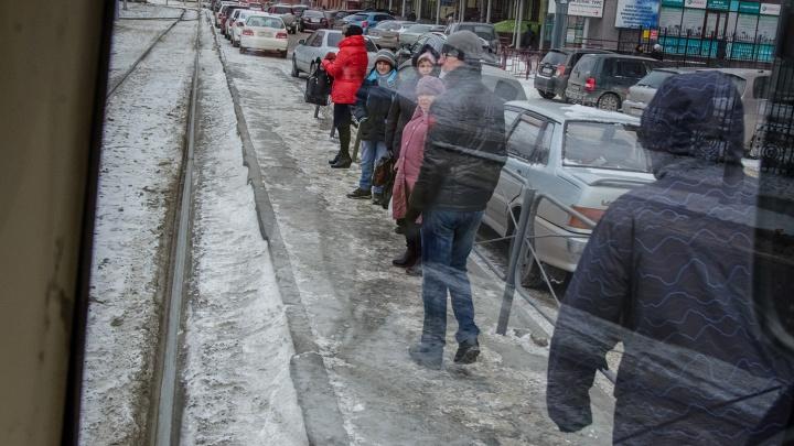 Эксперты назвали самый желанный вид транспорта для новосибирцев