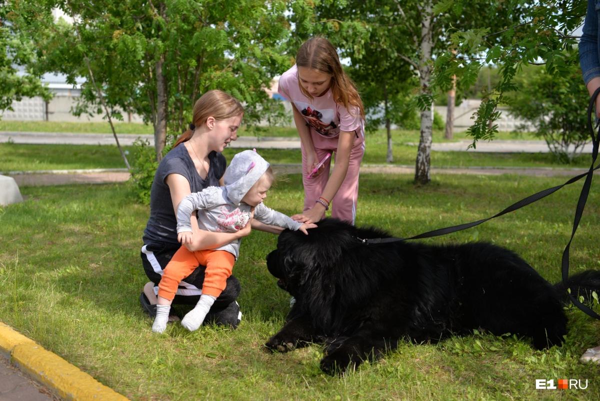 Самый добрый фоторепортаж: четвероногие друзья пришли поддержать пациентов детского онкоцентра