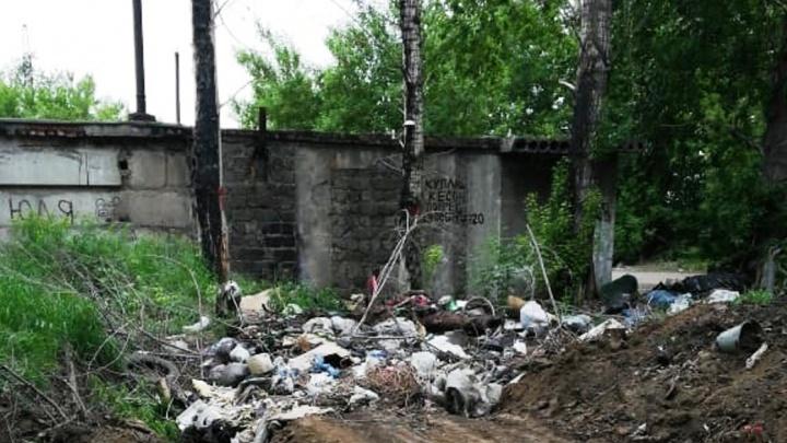 В магазине бытовой техники объяснили, откуда в омском лесу взялся их мусор