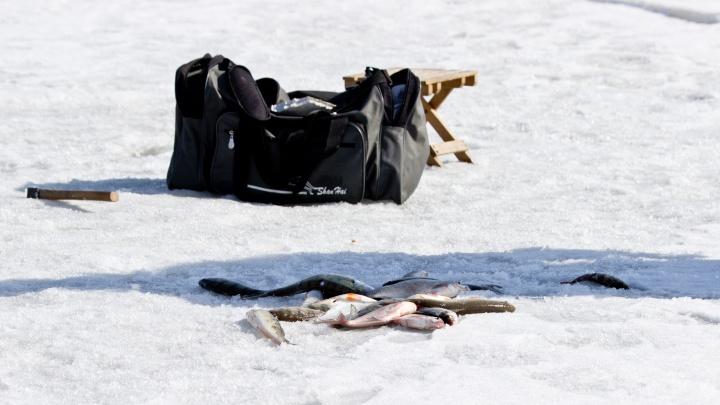 Рыбак умер на льду Обского моря
