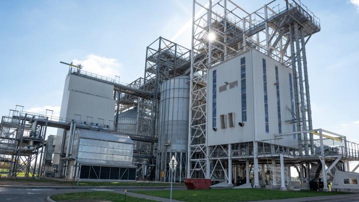 Объединили волгоградских фермеров и запустили завод за 10 миллиардов рублей