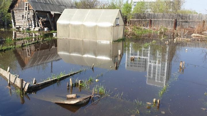 «Во дворах утки плавают»: на ВИЗе частный сектор ушел под воду из-за неисправного дренажа