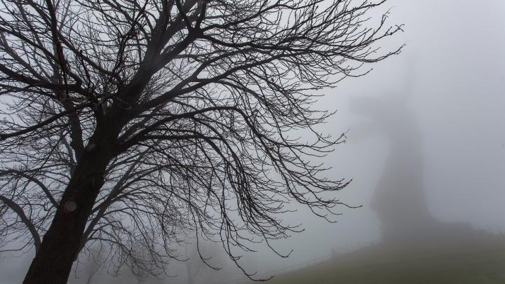 «Молочный» туман и снег нагрянут в Волгоградскую область в выходные