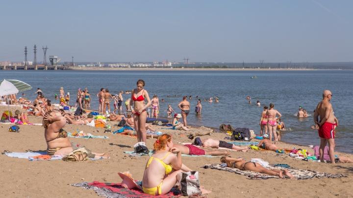 Новосибирский парк остался без ремонта из-за бухгалтера, укравшей 8 миллионов