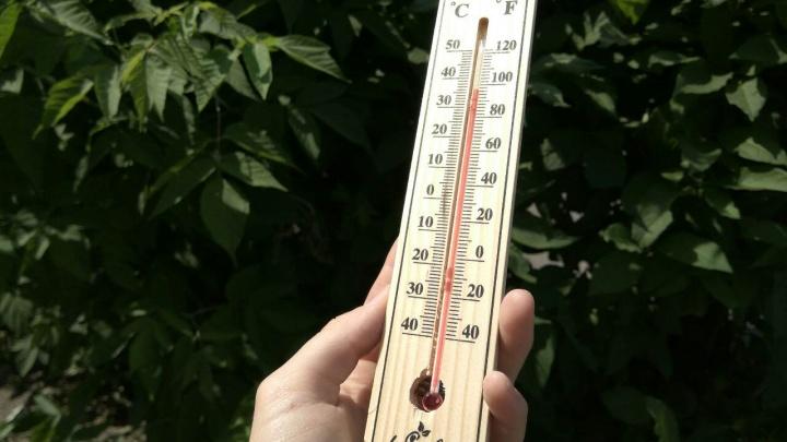 «В городе было 39,1 градуса»: день по жаре в Красноярске стал вторым за 100 лет наблюдений
