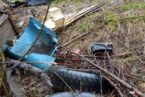 На свалках нашли самый разнообразный мусор