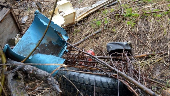 На окраине Перми нашли 12 тонн стройотходов и покрышек: возбуждено уголовное дело