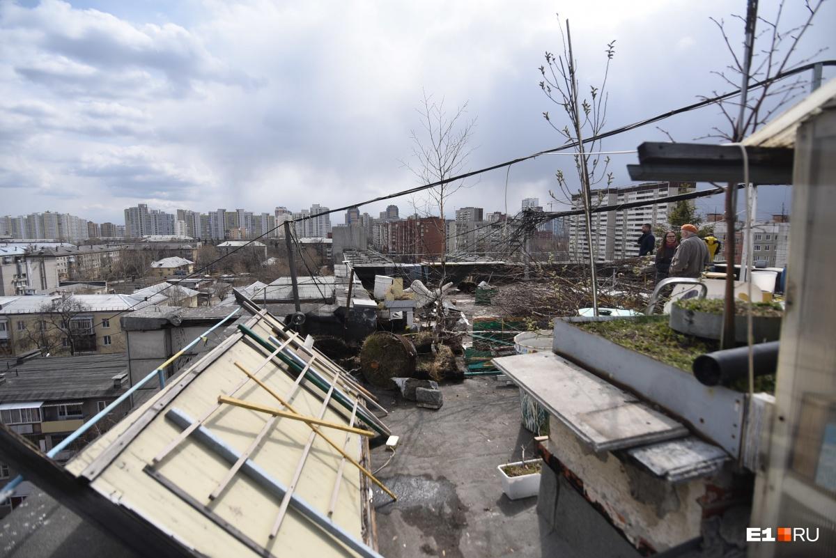 Остатками сада завалена вся крыша над квартирой Николая Ивановича