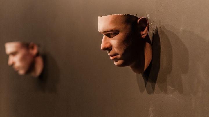 Услышать грибницу и увидеть 3D‑портрет: в PERMM открыли выставку, объединяющую искусство и науку