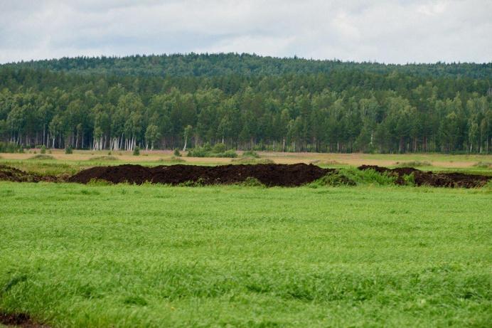 Так выглядит участок, который могут отдать под полигон и завод