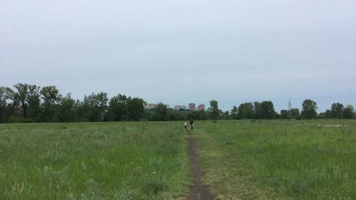 В Красноярск возвращается жаркая погода