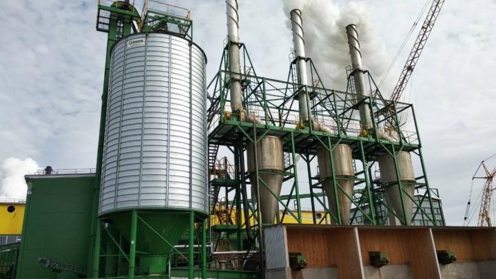 Почти 400 сотрудников лесопилки в Соломбале останутся без работы 1 декабря