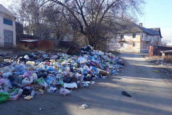 Администрация Волгограда заявляет, что мусор оперативно вывозят