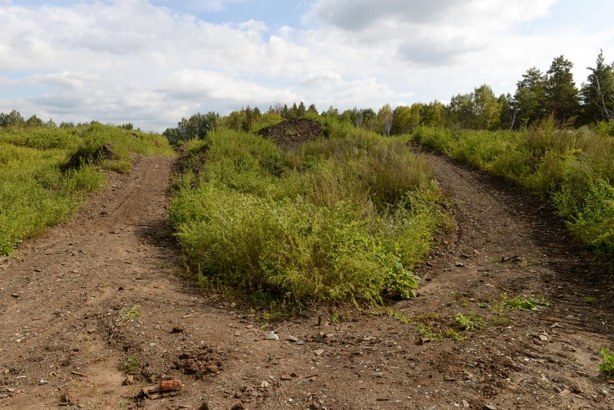 Нужная лесная дорога выводит на большой пустырь с десятком грунтовок, но нам надо снова свернуть в лес