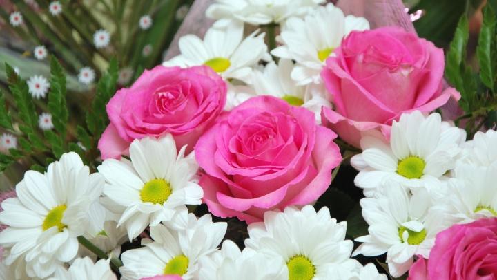 Букет с калифорнийским трипсом: опасные цветы не добрались до прилавков Архангельска