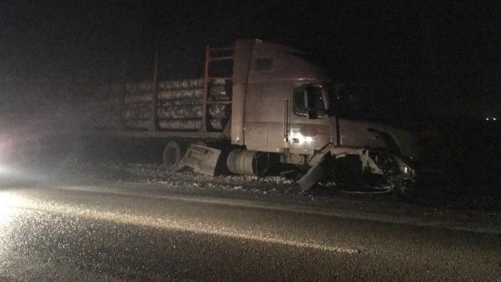 В жуткой аварии под Ревдой столкнулись два грузовика и пять легковушек