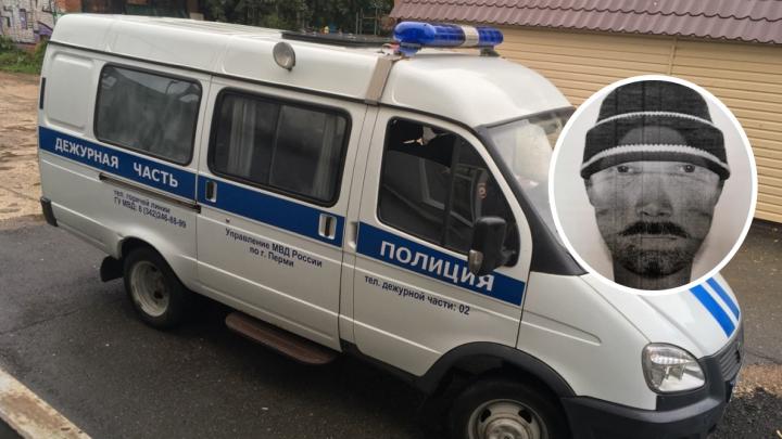 Полиция ищет мужчину, напавшего на девочку в поселке Майском