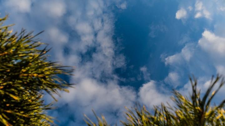 В Перми на неделе ожидается теплая погода с небольшими дождями