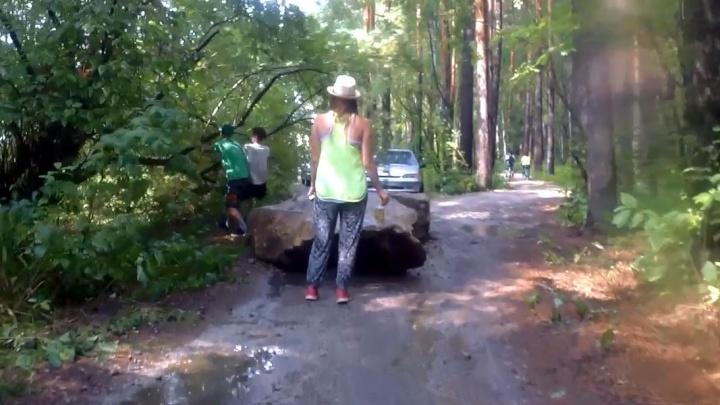 В Шарташском парке два парня пытались сломать деревья, чтобы проехать к озеру. Они попали на видео