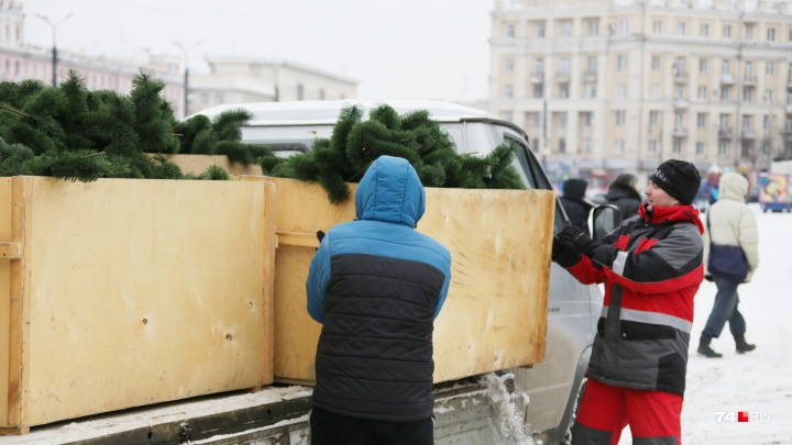 Праздник к нам приходит: в центре Челябинска начали собирать новогоднюю ель