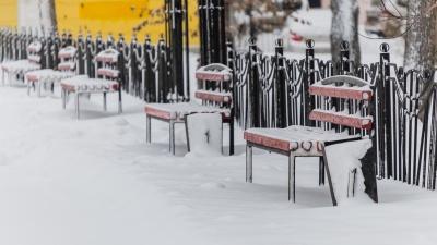 Морозов не будет. Синоптики рассказали о погоде в Прикамье на неделю
