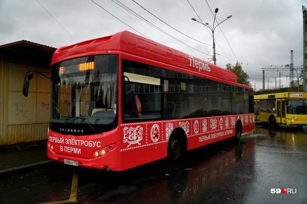 Электробус выглядит нарядно. Так скоро должны выглядеть все автобусы в Перми