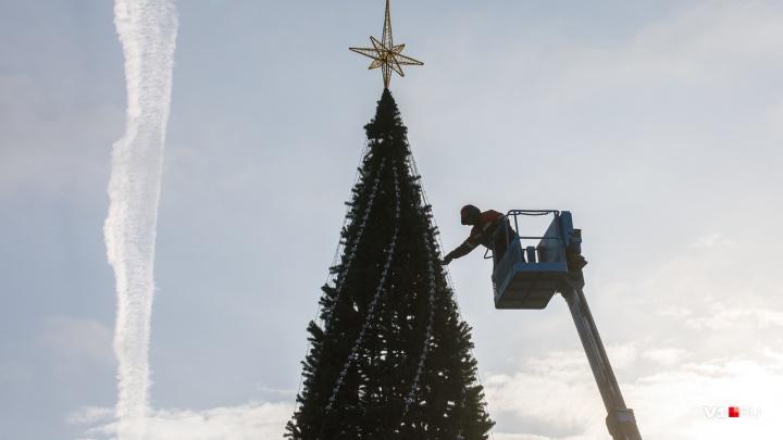 В Волгограде начали разбирать главную городскую елку
