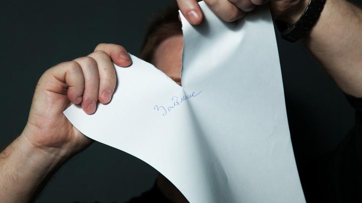 С чистого листа: аналитики выяснили, в какой день недели челябинцы чаще всего ищут работу