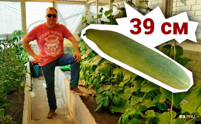 Садоводство — хобби Константина