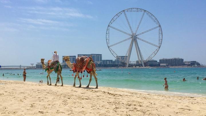 Выгоднее за границей, чем у нас: куда улететь из Тюмени на море за скромные деньги