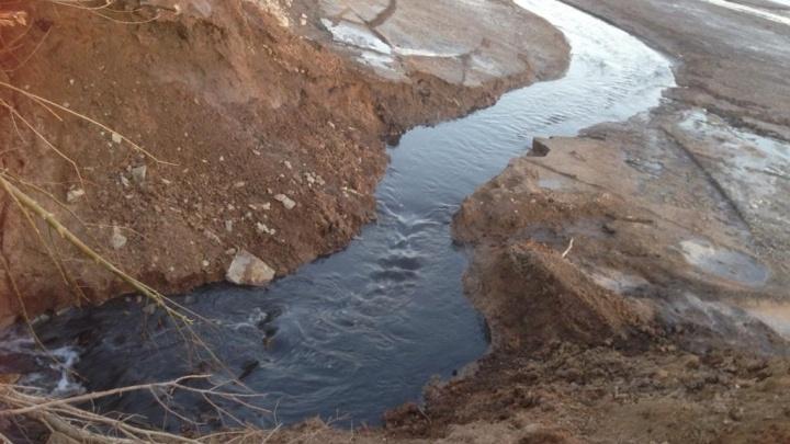 В поселке Нагаево под Уфой — диверсия: кто-то разрушил дамбу и слил пруд, погибла рыба