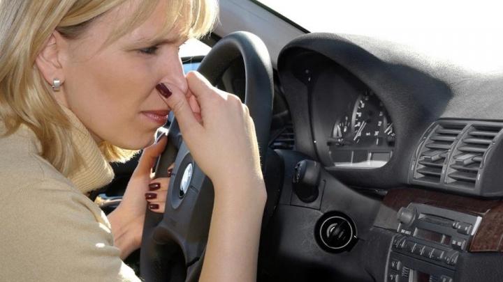 Появилась услуга устранения запахов: вместо отталкивающего смрада в авто появится приятный аромат