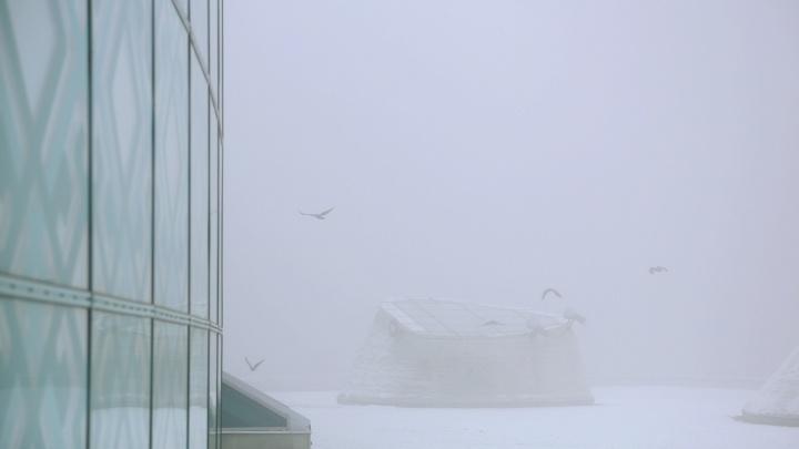 Землю накроет пеленой: в Башкирии ожидается сильный туман