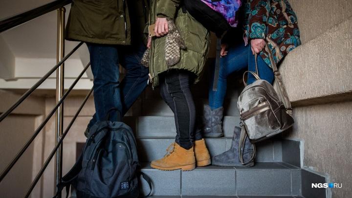 «Начинают сыпаться кости»: по WhatsApp пошла рассылка о китайских наркотиках в школе под Новосибирском